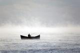 За риба в мъглата ; comments:13