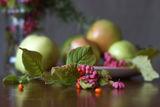 Натюрморт с ябълки ; comments:29