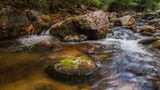 Река Девинска ; comments:42
