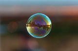 Soap Bubble ; comments:10
