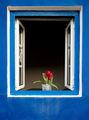 Прозорец в Португалия ; Comments:8