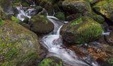 Владайска Река ; comments:43