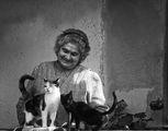 бабата с котките ; comments:45