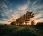 Есенният залез, когато денят е къс и температурите падат рязко с последните слънчеви лъчи... ; comments:44