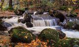 Есен на Витоша ; Comments:52