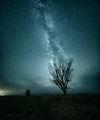 Звезден прах ; comments:22