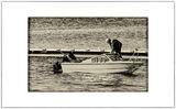 Старецът за риба ; comments:8