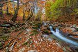 Видима - есенно ; Comments:7