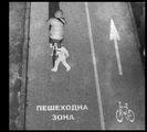 велосипедисти срещу колоездачи ; comments:13