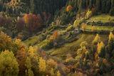 Усещане за есен ; comments:53