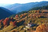 Есен в Момчиловци ; Comments:21