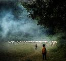 Когато бях овчарче и овците пасях, бях много благодарен, макар и сиромах. ; comments:45
