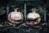хелоуин манията и зарзавата ; comments:36