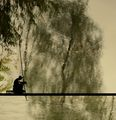 Рибари... ; comments:63