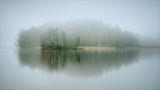 Мъгливо ; comments:38