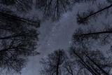 Поглед към звездите ; comments:13