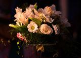 Цветя . ; comments:2