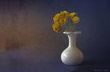Есенни цветя. ; comments:12