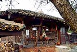 Една къща в Бръшлян ; comments:2