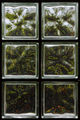 Интерпретациите на един прозорец ; comments:17