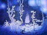 Празник в Леденото кралство... ; comments:45
