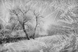Зима ; comments:14