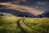 В полето... ; comments:32