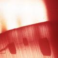 изгрев над червени поля ; comments:11