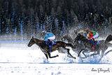 White Turf - Saint Moritz ; comments:13