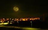 la luna del cacciatore ; comments:20