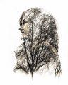 Майката природа. ; comments:10