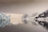 Антарктика ; comments:26