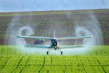 Вечният Ан-2 ; comments:46
