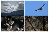 Пролетни настроения ; comments:21