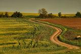 Път за някъде.. ; Comments:35