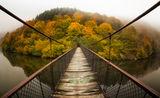 моста към омагьосания остров ; comments:38
