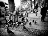Жената с гълъбите... ; Comments:18