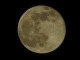 Луната нашият спътник ; comments:4