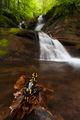 Директор на водопад ; comments:36