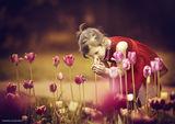 Ухание на пролет.. ; comments:61