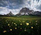 Свежо утро край прохода Falzarego и планината Lagazuoi (2807m) ; Comments:61