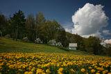 Време е за пролет ; Comments:27