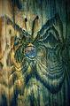 Пеперудена магия ; comments:47