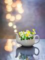 чайниче ; comments:15