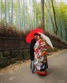 Младоженци в Нара...Япония!!! ; comments:74