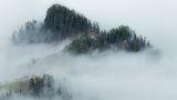 В тумане ; comments:22