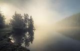 Фотографът и мъглата ; comments:47