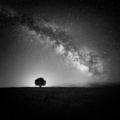В сиянието на нощта ; comments:33