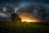 Пролетен Апокалипсис по залез ; comments:53