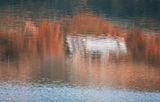 Живописна импресия. ; comments:9